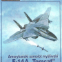 1-2-3/2014 Samolot F-14A TOMCAT